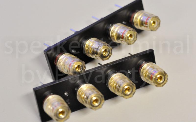 speaker-terminal_SONY TA-F800 ES_1